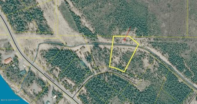 41720 Murphy Lane, Soldotna, AK 99669 (MLS #19-7939) :: Roy Briley Real Estate Group