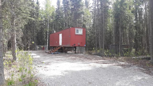 2300 Craig Street, Delta Junction, AK 99737 (MLS #19-7960) :: Roy Briley Real Estate Group
