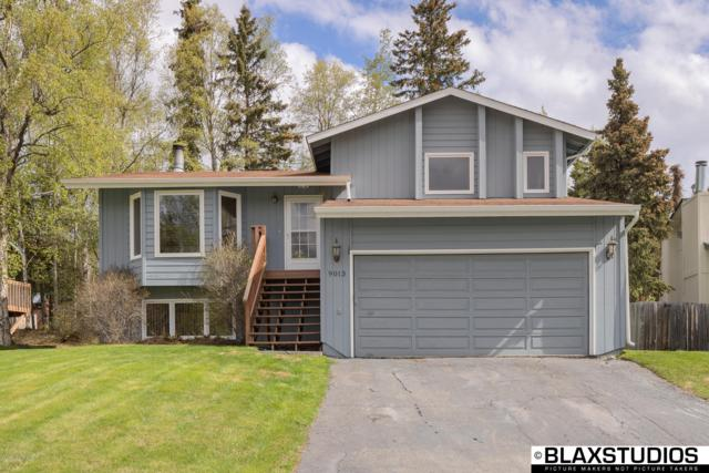 9013 W Parkview Terrace Loop, Eagle River, AK 99577 (MLS #19-7970) :: Roy Briley Real Estate Group