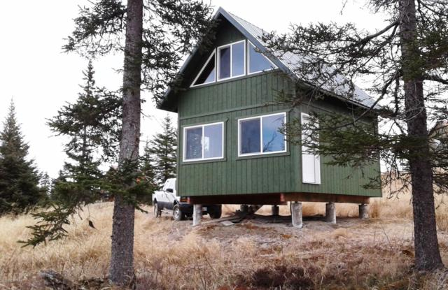 29277 Moosefield Street, Anchor Point, AK 99556 (MLS #19-7973) :: Roy Briley Real Estate Group