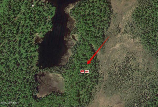 A003 No Road, Talkeetna, AK 99676 (MLS #19-7979) :: RMG Real Estate Network | Keller Williams Realty Alaska Group