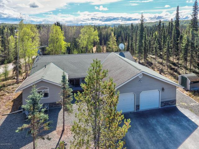 34120 Snow Lane, Soldotna, AK 99669 (MLS #19-7987) :: Roy Briley Real Estate Group