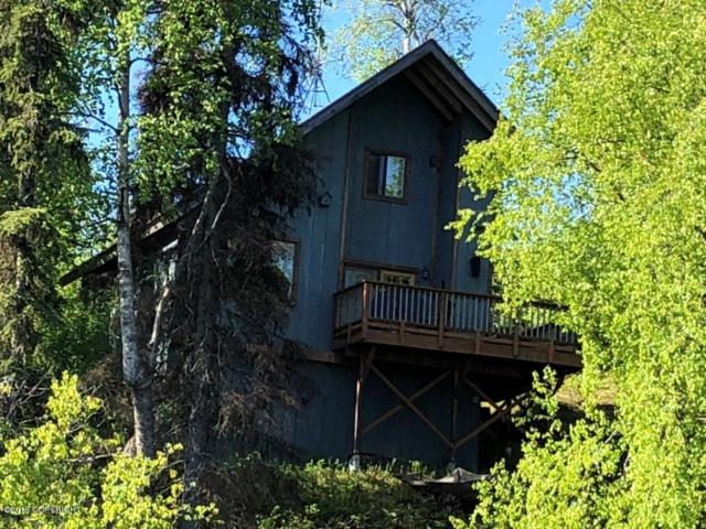 L48C No Road, Willow, AK 99688 (MLS #19-8) :: Alaska Realty Experts