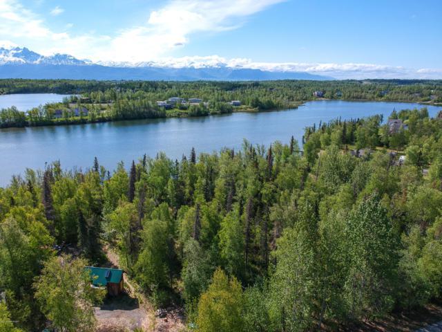 4400 E Birch Drive, Wasilla, AK 99654 (MLS #19-8033) :: Roy Briley Real Estate Group