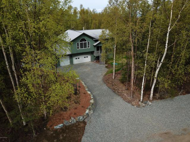 12310 Tracy Road, Anchorage, AK 99516 (MLS #19-8096) :: Roy Briley Real Estate Group