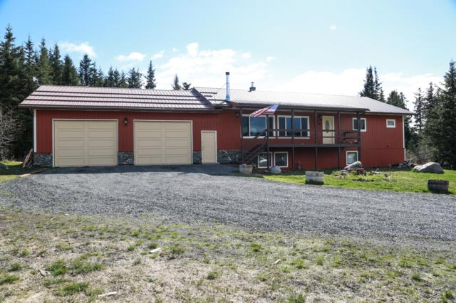 1425 Eagle View Drive, Homer, AK 99603 (MLS #19-8108) :: Roy Briley Real Estate Group