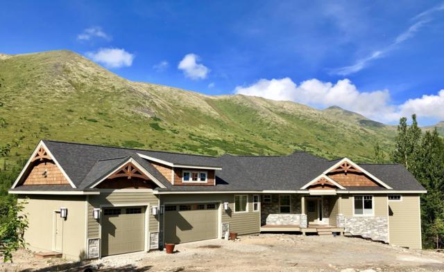 25322 Mcintyre Road, Eagle River, AK 99577 (MLS #19-8149) :: Roy Briley Real Estate Group