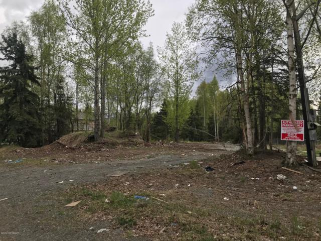 3640 E 72nd Avenue, Anchorage, AK 99507 (MLS #19-8165) :: Roy Briley Real Estate Group