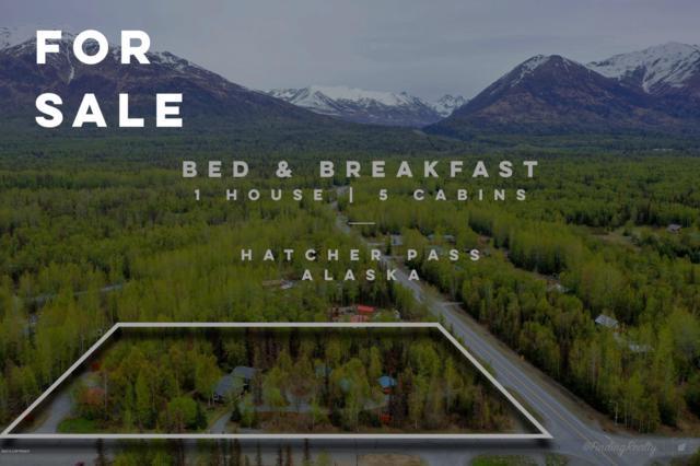 9000 N Palmer-Fishhook Road, Palmer, AK 99645 (MLS #19-8231) :: RMG Real Estate Network | Keller Williams Realty Alaska Group