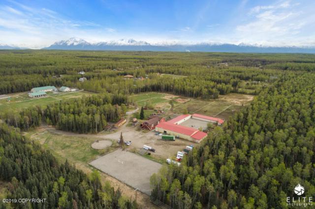 4652 Bluegrass Lane, Wasilla, AK 99623 (MLS #19-8242) :: RMG Real Estate Network | Keller Williams Realty Alaska Group