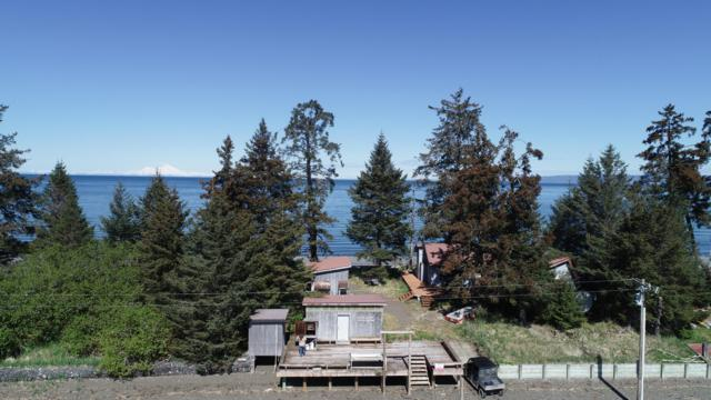 64533 Macdonald Spit, Seldovia, AK 99663 (MLS #19-8273) :: Wolf Real Estate Professionals