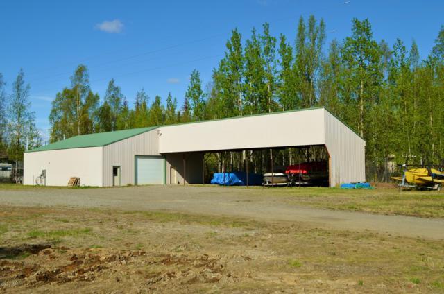 14265 W Hollywood Road, Big Lake, AK 99652 (MLS #19-8278) :: RMG Real Estate Network | Keller Williams Realty Alaska Group