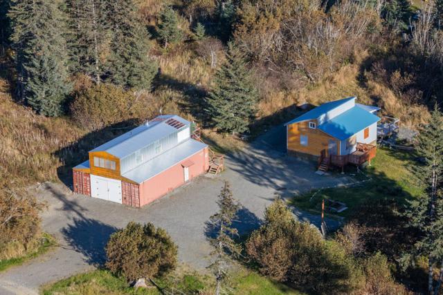 31880 Sterling Hwy Highway, Anchor Point, AK 99556 (MLS #19-8285) :: RMG Real Estate Network | Keller Williams Realty Alaska Group