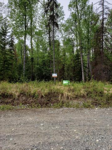 28140 S Dragonfly Brook Trail, Talkeetna, AK 99676 (MLS #19-8286) :: RMG Real Estate Network | Keller Williams Realty Alaska Group