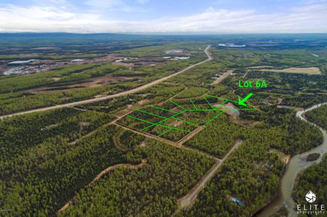 69150 Mckinley Vista Loop, Willow, AK 99688 (MLS #19-8335) :: Synergy Home Team