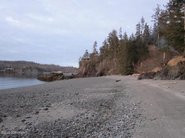 Tr 7 Hesketh Island, Homer, AK 99603 (MLS #19-8393) :: Wolf Real Estate Professionals