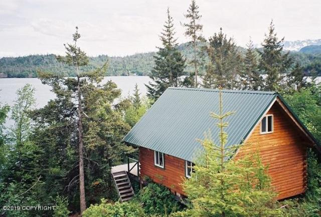 L1-2 Leeboard, Homer, AK 99603 (MLS #19-8900) :: Wolf Real Estate Professionals