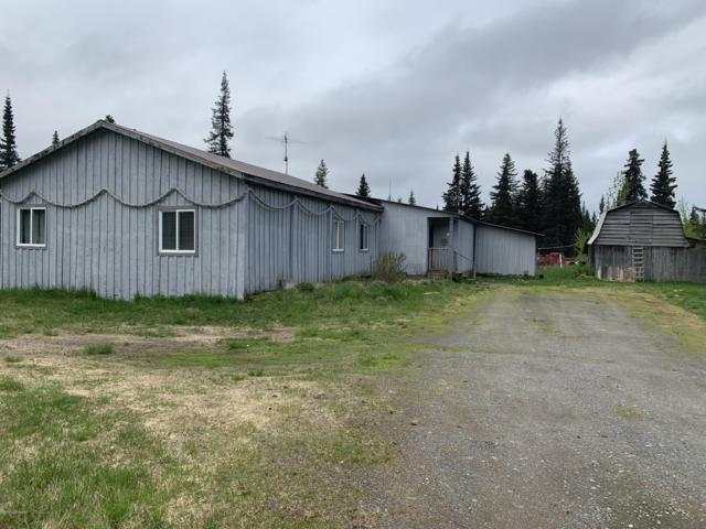 34577 N Fork Road, Anchor Point, AK 99556 (MLS #19-8903) :: Team Dimmick