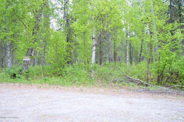 23769 S Zobil Drive, Trapper Creek, AK 99683 (MLS #19-8943) :: Core Real Estate Group