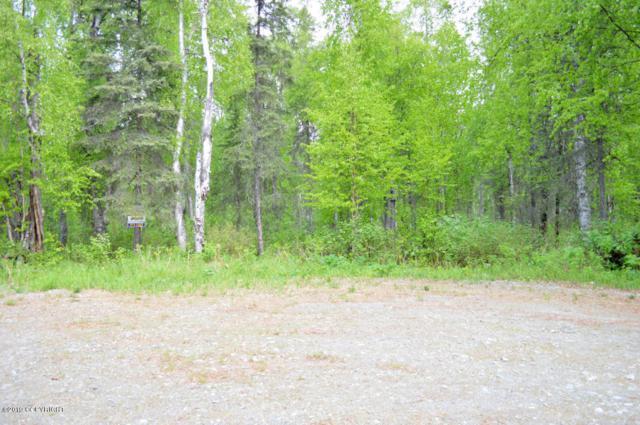 23768 S Zobil Drive, Trapper Creek, AK 99683 (MLS #19-8944) :: Core Real Estate Group