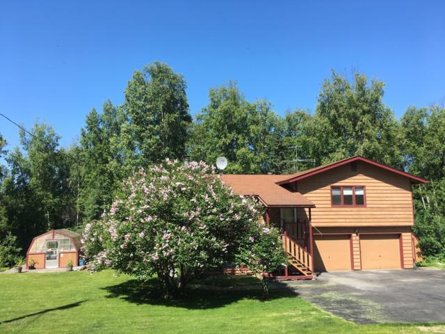 21828 Woodcliff Drive, Chugiak, AK 99567 (MLS #19-9083) :: Roy Briley Real Estate Group