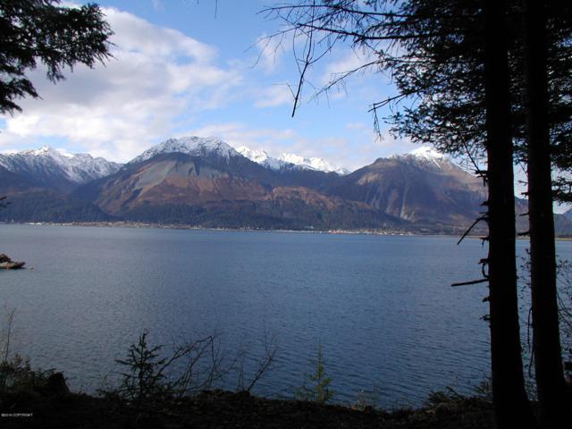 1121 Nash Road, Seward, AK 99664 (MLS #19-9122) :: RMG Real Estate Network | Keller Williams Realty Alaska Group