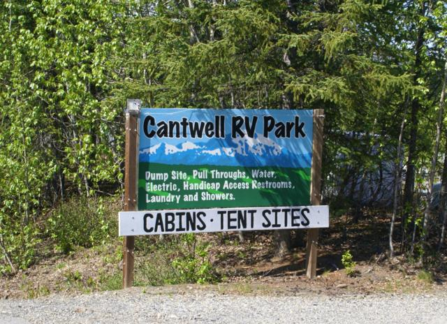.3 Cantwell Station Road, Cantwell, AK 99729 (MLS #19-9334) :: Roy Briley Real Estate Group