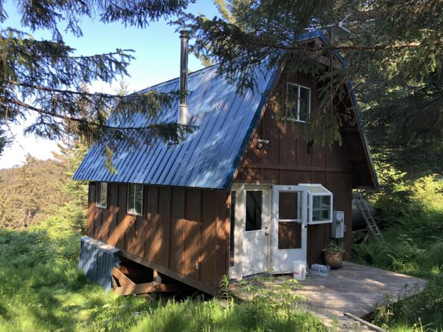 3108 Jakolof Bay Road, Seldovia, AK 99663 (MLS #19-9472) :: Wolf Real Estate Professionals