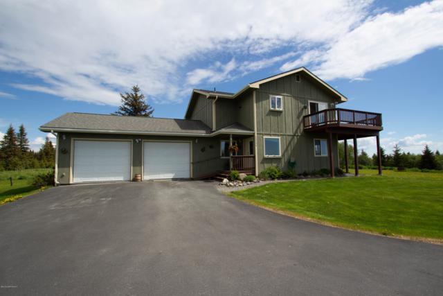 59796 Pahl Lane, Homer, AK 99603 (MLS #19-9519) :: RMG Real Estate Network | Keller Williams Realty Alaska Group