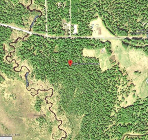 9894 E Susitna River Road, Trapper Creek, AK 99683 (MLS #19-9575) :: Core Real Estate Group