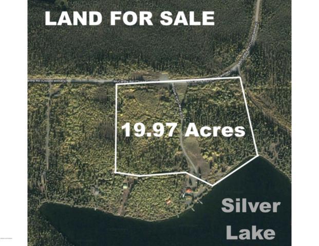 000 U.S. Survey 4097, Chitina, AK 99566 (MLS #19-9622) :: Roy Briley Real Estate Group