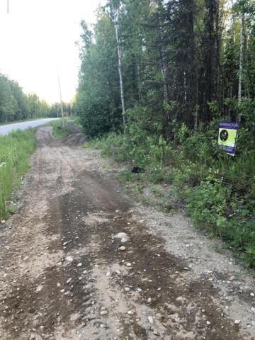 1380 N Meadow Lakes Loop, Wasilla, AK 99654 (MLS #19-9675) :: Team Dimmick