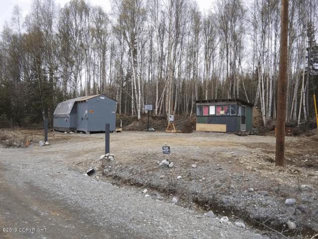4852 Kenaka Bena Loop, Wasilla, AK 99652 (MLS #19-9875) :: Synergy Home Team