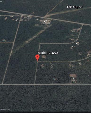 L7 B2 Mukluk, Tok, AK 00000 (MLS #19-9993) :: Roy Briley Real Estate Group