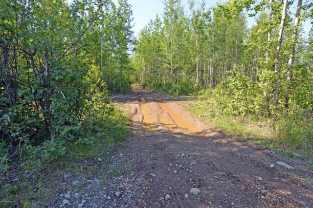 14044 W Millers Reach Road, Houston, AK 99623 (MLS #19-9999) :: RMG Real Estate Network | Keller Williams Realty Alaska Group