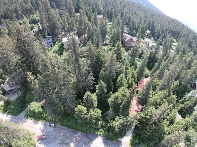 L6 B28 St. Moritz Drive, Girdwood, AK 99587 (MLS #20-10007) :: Wolf Real Estate Professionals