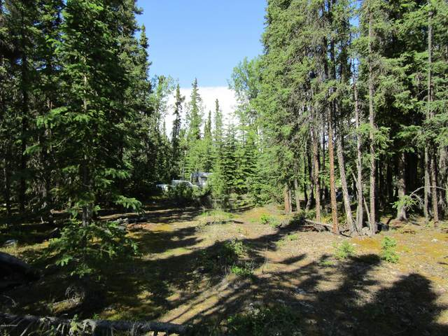 T5B3 Spruce Road, Delta Junction, AK 99737 (MLS #20-10016) :: Wolf Real Estate Professionals