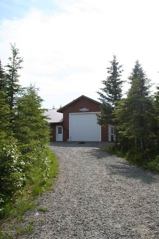33853 Bailey Drive, Anchor Point, AK 99556 (MLS #20-10074) :: Wolf Real Estate Professionals