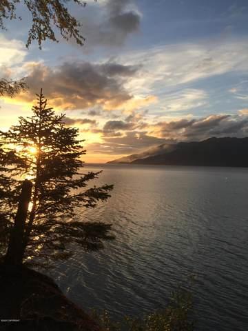 65213 Whiskers Drive, Hope, AK 99605 (MLS #20-10149) :: The Adrian Jaime Group | Keller Williams Realty Alaska