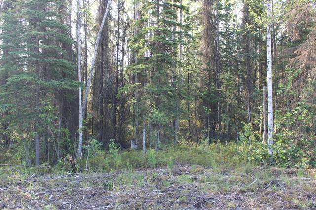 441 N O'daniel Road, Wasilla, AK 99654 (MLS #20-10154) :: RMG Real Estate Network | Keller Williams Realty Alaska Group