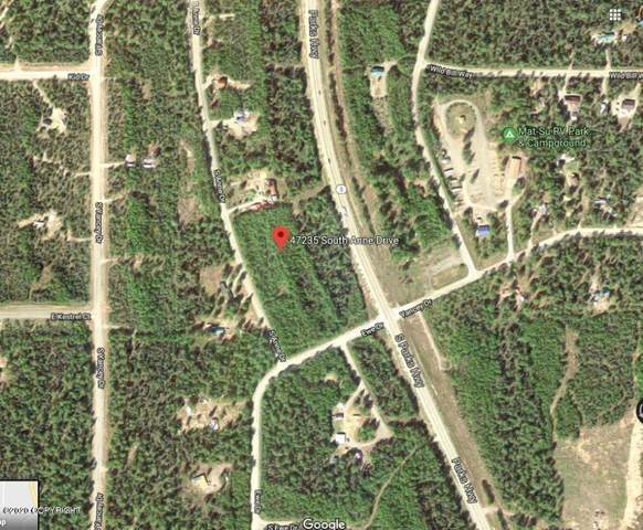 47235 S Anne Drive, Willow, AK 99688 (MLS #20-10162) :: Team Dimmick
