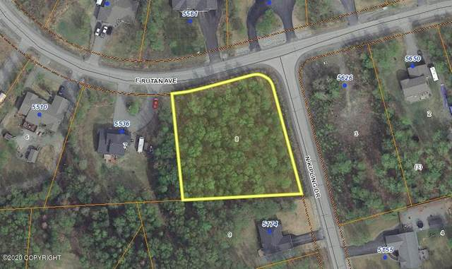 NHN E Rutan Avenue, Wasilla, AK 99654 (MLS #20-10287) :: Alaska Realty Experts
