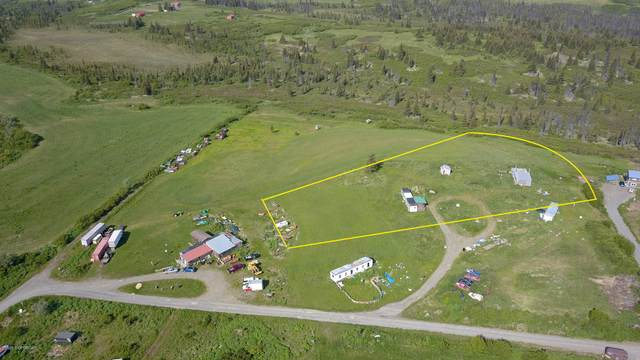 51619 Big Sky Lane, Homer, AK 99603 (MLS #20-10431) :: RMG Real Estate Network   Keller Williams Realty Alaska Group