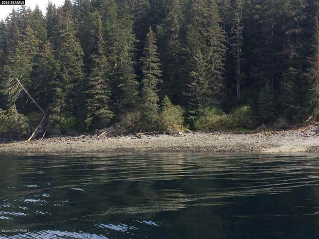 000 Legal Address Only, Haines, AK 99827 (MLS #20-10444) :: The Adrian Jaime Group | Keller Williams Realty Alaska