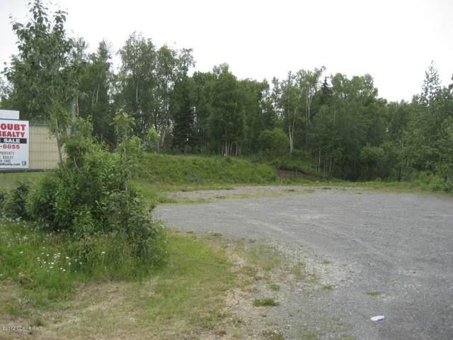 182 S Binkley Street, Soldotna, AK 99669 (MLS #20-10445) :: Roy Briley Real Estate Group