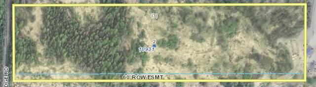 10931 S Ridge Road, Wasilla, AK 99654 (MLS #20-10454) :: Wolf Real Estate Professionals