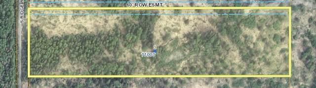 11003 S Ridge Road, Big Lake, AK 99652 (MLS #20-10455) :: Wolf Real Estate Professionals