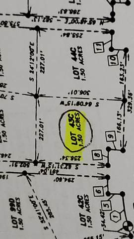 68C Legal Address Only, Angoon, AK 99820 (MLS #20-10489) :: Synergy Home Team
