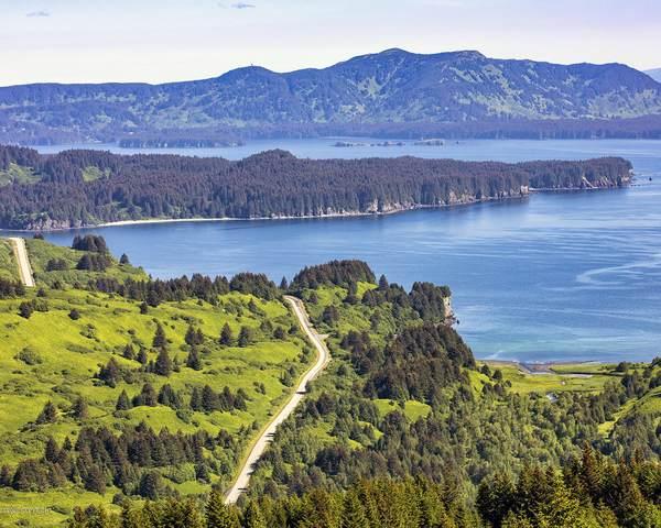 L4 The Cliffs-Cliff Point Estates, Kodiak, AK 99615 (MLS #20-10538) :: Wolf Real Estate Professionals