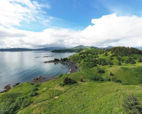 L2 Beaches-Cliff Point Estates, Kodiak, AK 99615 (MLS #20-10541) :: Wolf Real Estate Professionals